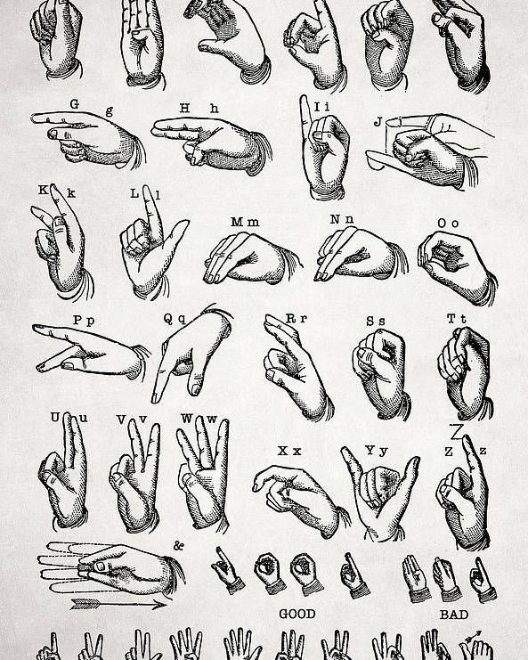 The Manual Alphabet Poster By Zapista Ou In 2021 Alphabet Art Print Sign Language Art Alphabet Poster