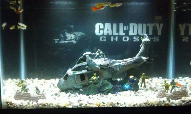 Cod the biography of fish that