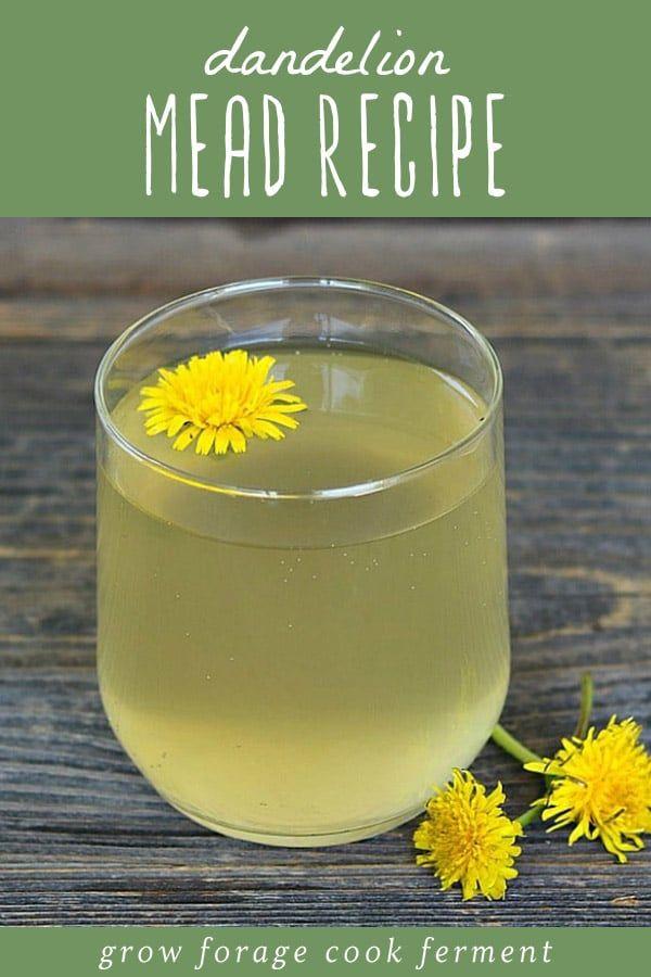 Dandelion Mead Recipe Dandelion Wine Made With Honey Recipe Mead Recipe Dandelion Wine Dandelion Recipes