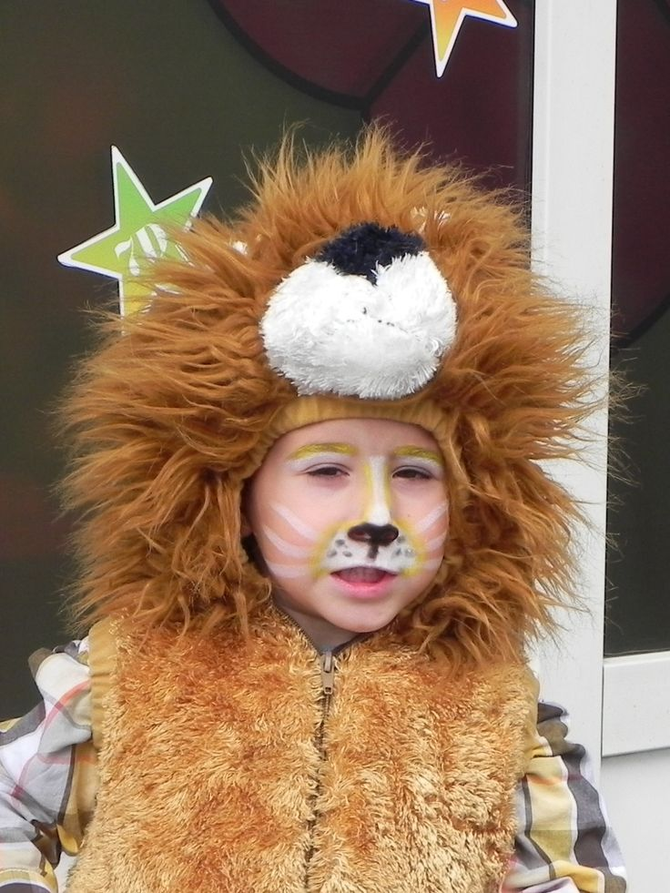 Simple lion face paint for kids. I later added a black ...