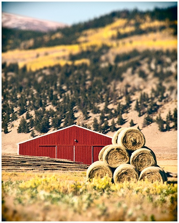 """Little Red Barn"" by Andy & Cindy Serpa of Humboldt Street Photography"