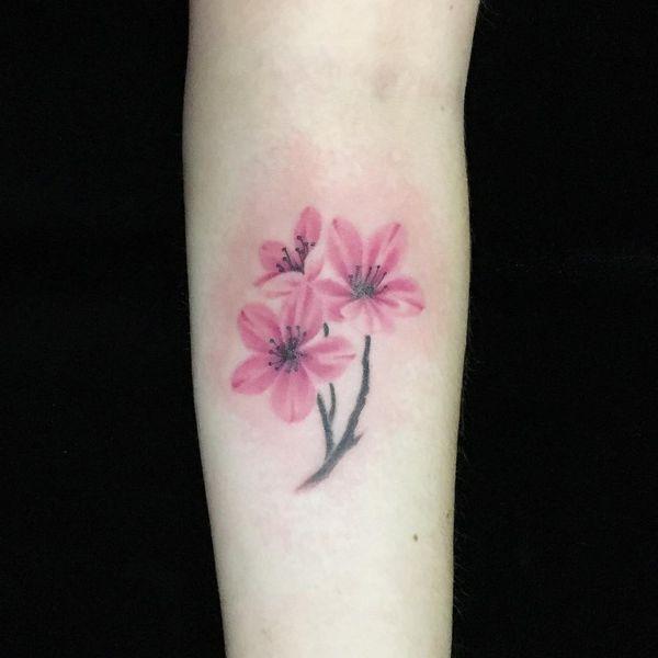 12 Ultra Prettty Tree Tattoos On Back Pretty Designs Blossom Tattoo Blossom Tree Tattoo Cherry Tree Tattoos