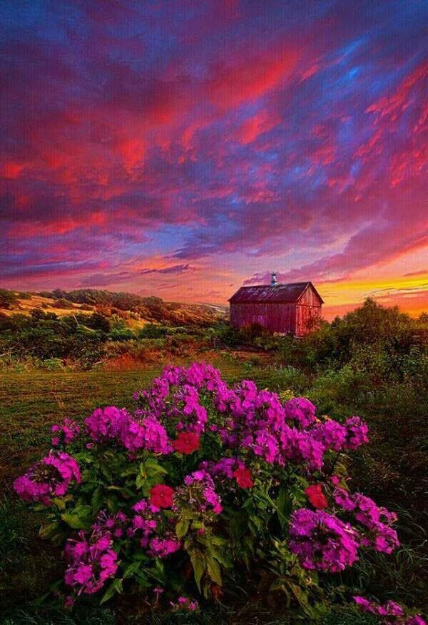 Cabin in the sunset. Such vibrant colors