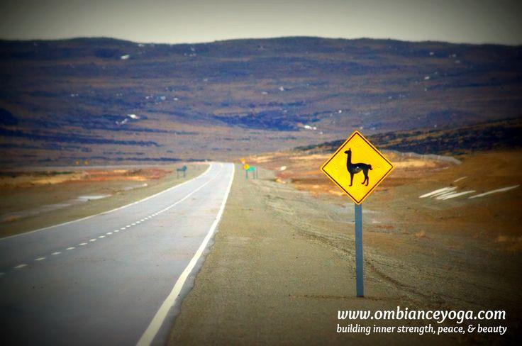 Roads less traveled - Patagonia, Argentina
