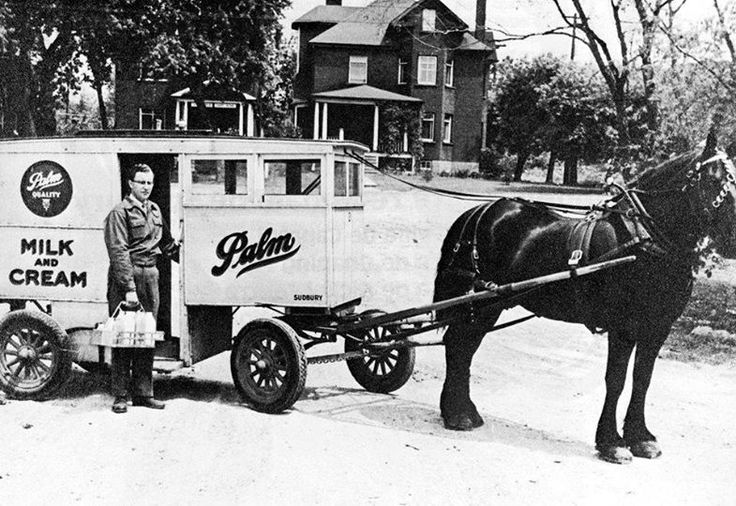 Palm Dairy milk delivery. The very last day of delivery by horse-drawn milk wagon in 1955. The house was on the west side of Drinkwater Street where the Paris Street bridge is located, in 2015.