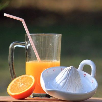 Lis na pomeranče - klikni pro větší velikost