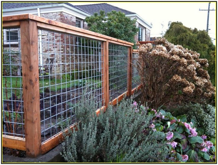 Backyard Fence Ideas For Dogs Outdoor Landscaping