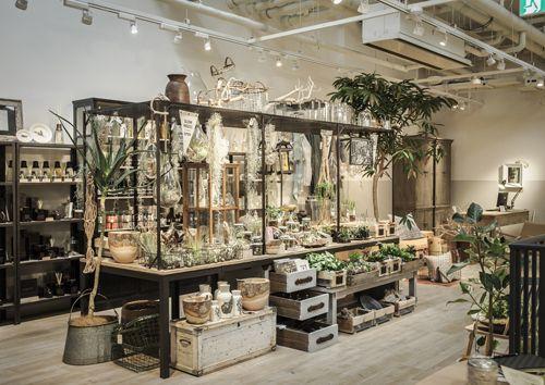 【ELLE】 NY|プラントアーティスト 川本諭の show my GREEN FINGERS|エル公式ブログ