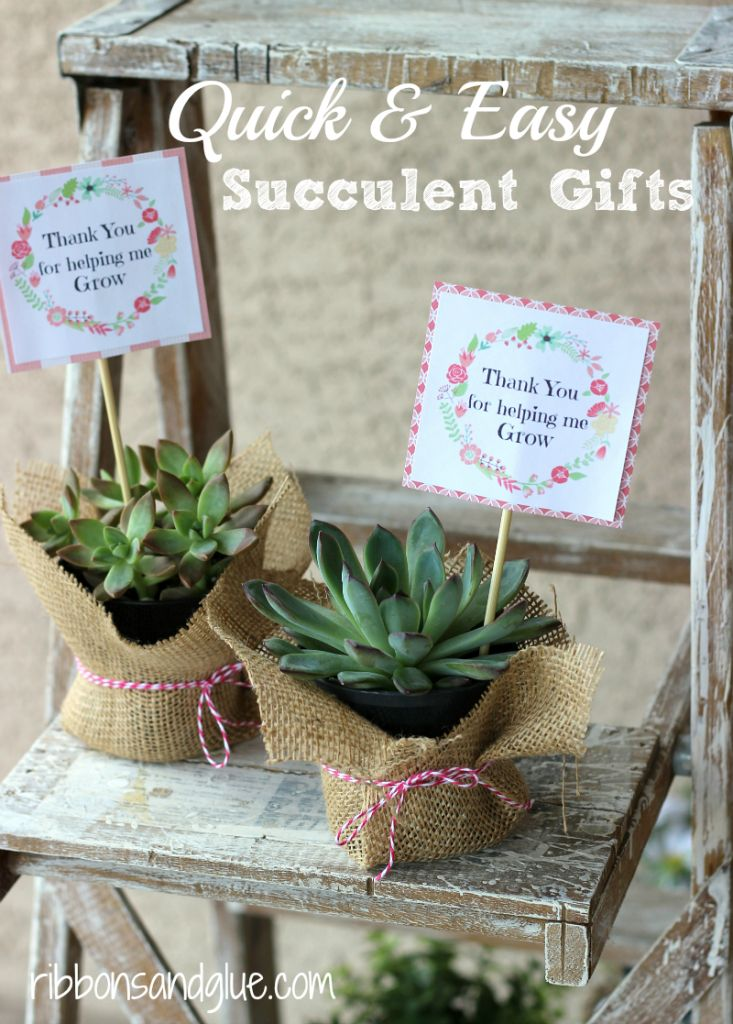 Easy Succulent Gifts with Free Printable.  Great idea for Teacher Gifts or Mother's Day!