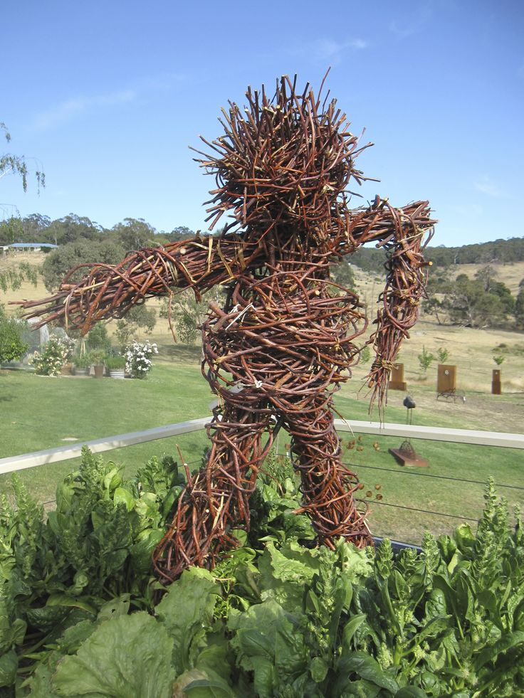 Twig scarecrow protecting the vegetable crates