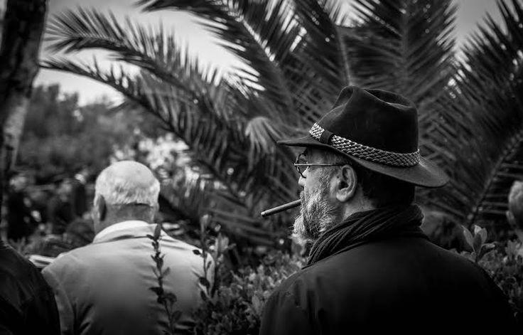 Παλιός γνώριμος - Φωτογραφία: Νικόλας Μανωλάκος