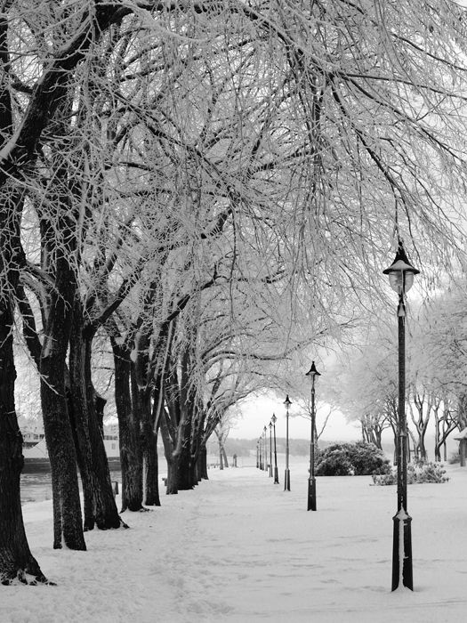Winter Alley  ~ Andy Simmons