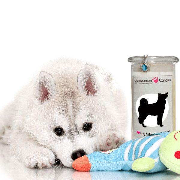 I Love My Siberian Husky! - Companion Candles