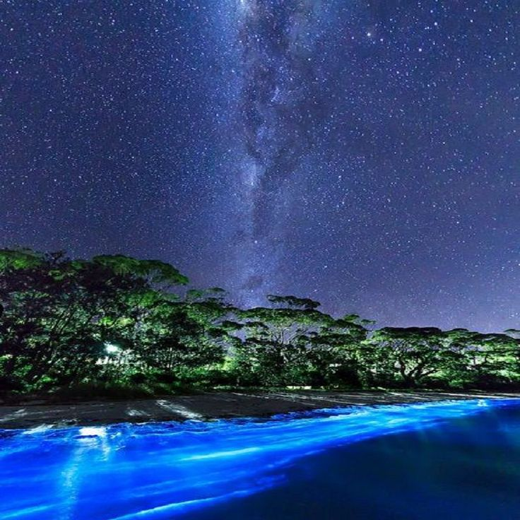 The Milky Way and bio-luminescent plankton - Vincentia - New South Wales - Australia