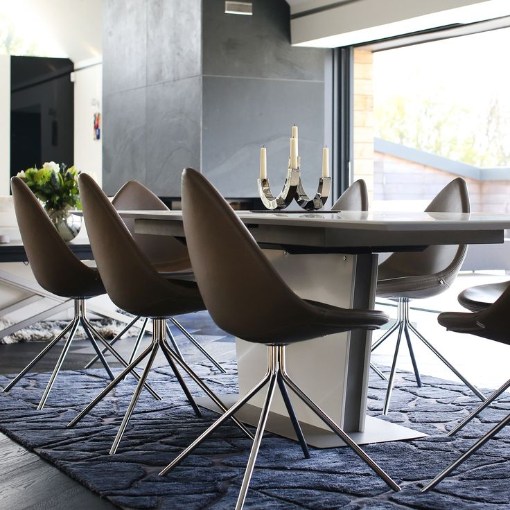 Dining chair and dining table