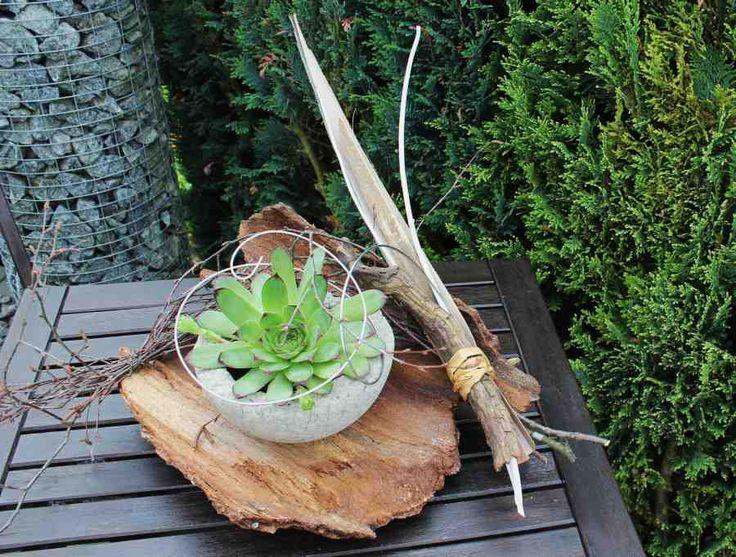 NB3 %u2013 Baumrinde nat�rlich dekoriert, mit einer Betonschale bepflanzt mit Sukkulenten! Preis 19,90%u20AC
