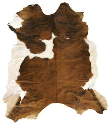 Surya Square 7' Duke Brown/White Novelty Rug - traditional - rugs - Wayfair