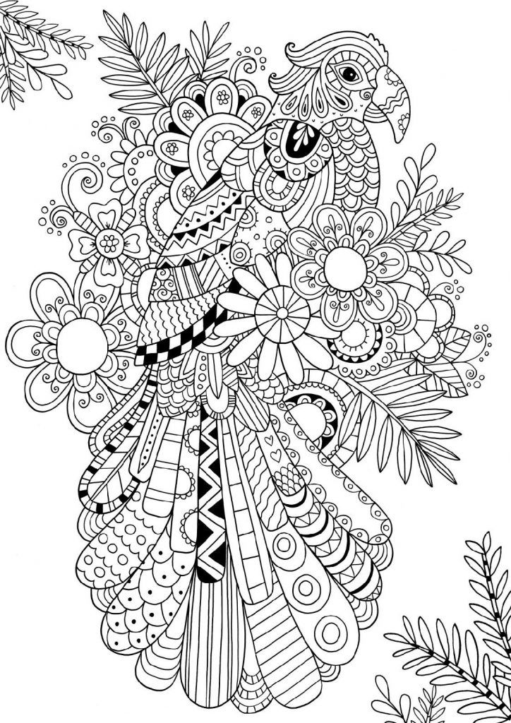 Bird Coloring Pages For Adults Bird Coloring Pages Coloring Pages For Grown Ups Coloring Pages