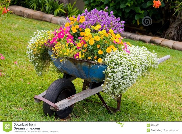 So... how to achieve this?  Are they each potted & then mounded in dirt?  Judy's Cottage Garden: Container Gardens
