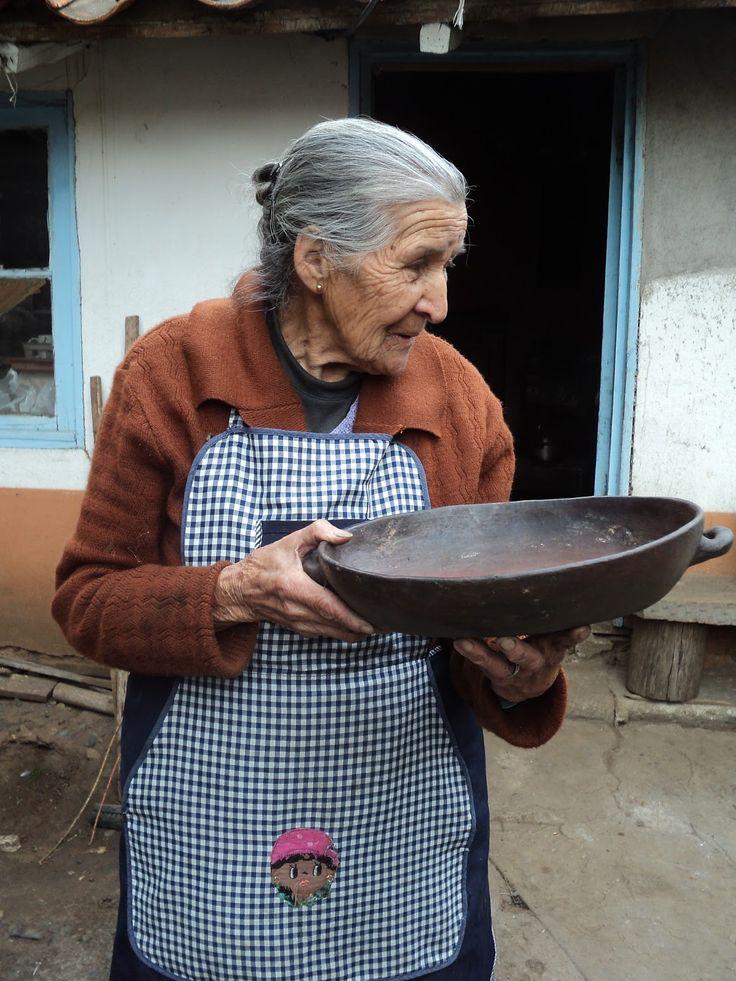 Maria Elena Jiménez Picero. Cobquecura