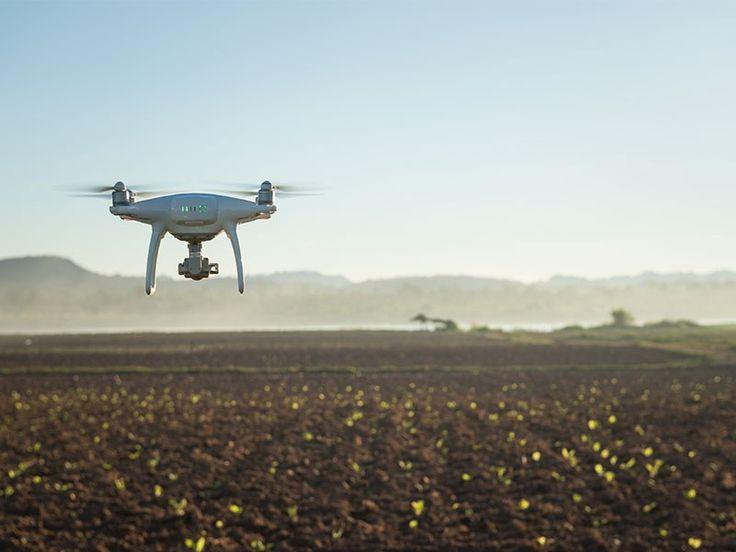 10 ways tech is transforming farming https://link.crwd.fr/1HAL