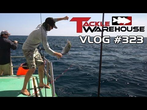 Tackle Warehouse Hawaii 2014 Part 7 Saltwater feat. Jared Lintner - Tackle Warehouse VLOG #323 - YouTube