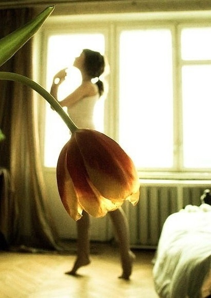 Ballerina with a tulip tutu