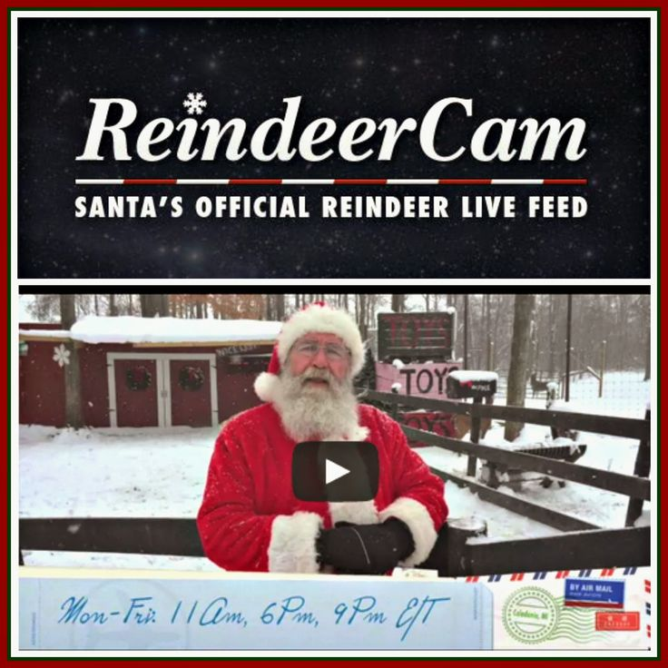 The Reindeer Cam:  Log on each day and see Santa's reindeer.  Santa also feeds the reindeer and checks his mail periodically!