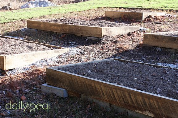 how to prepare an organic garden bed