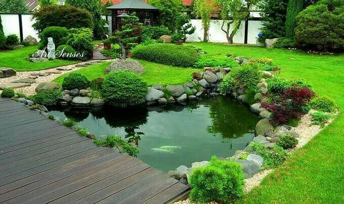 Z hrada zahrada pinterest gardens garden ponds and for Pond edging ideas