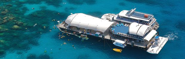 Great Adventures - Outer Barrier Reef tour from $224   Call Us 1300 731 620 #barrierreef #cairns #CairnsTour