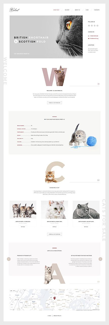 Cat Breeder #website #template. #themes #business #responsive #websitethemes