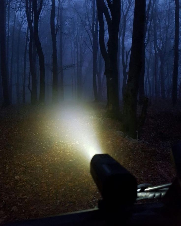 At foggy forest #sol300 #guee #headlights #cycling #outdoors #biking #bike #cycle #bicycle #instagram #fun