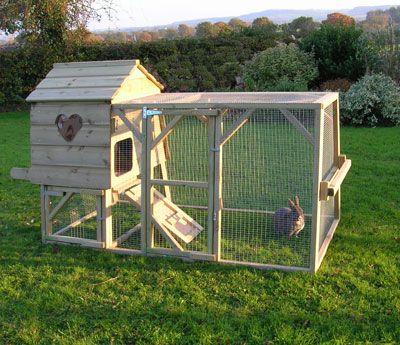 rabbit house and run