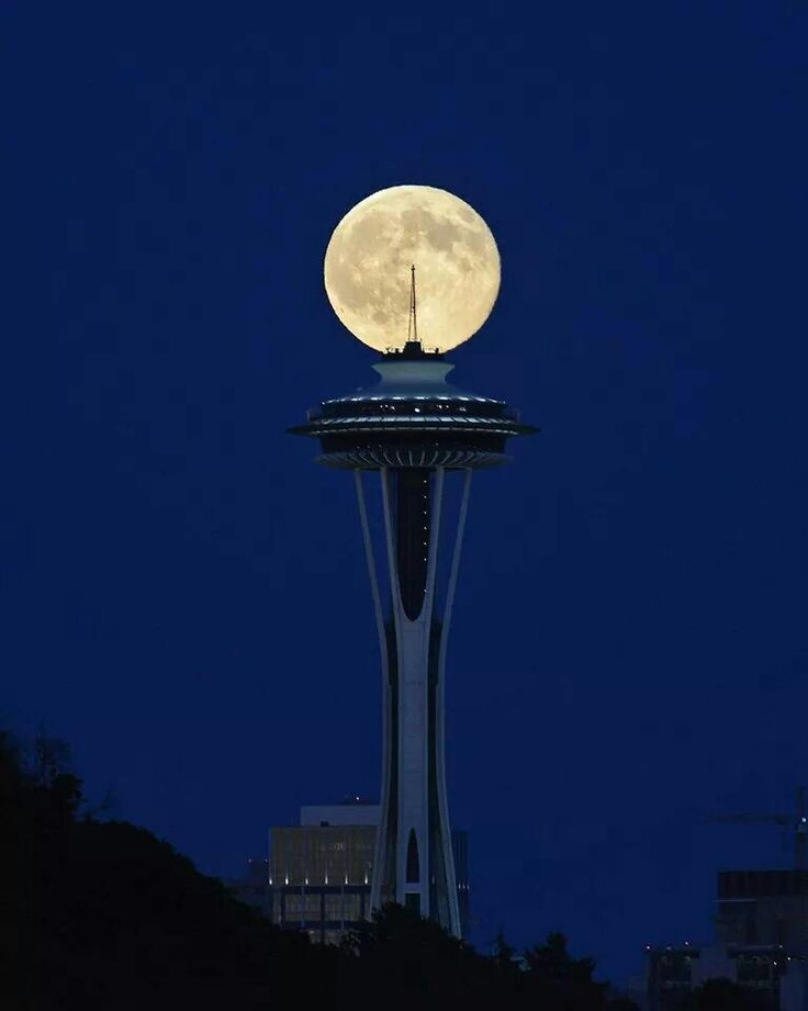 Seattle.super moon 2014