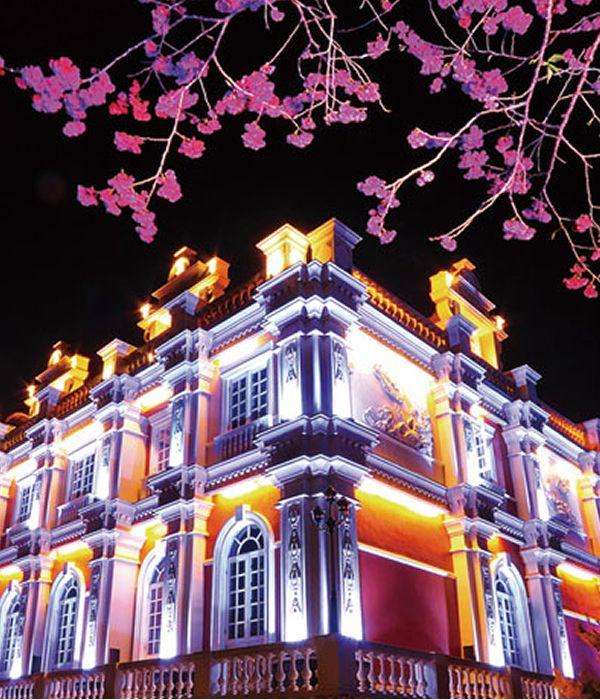 台北 日月潭 九族桜祭り(Taipei Cherry Blossom Festival)