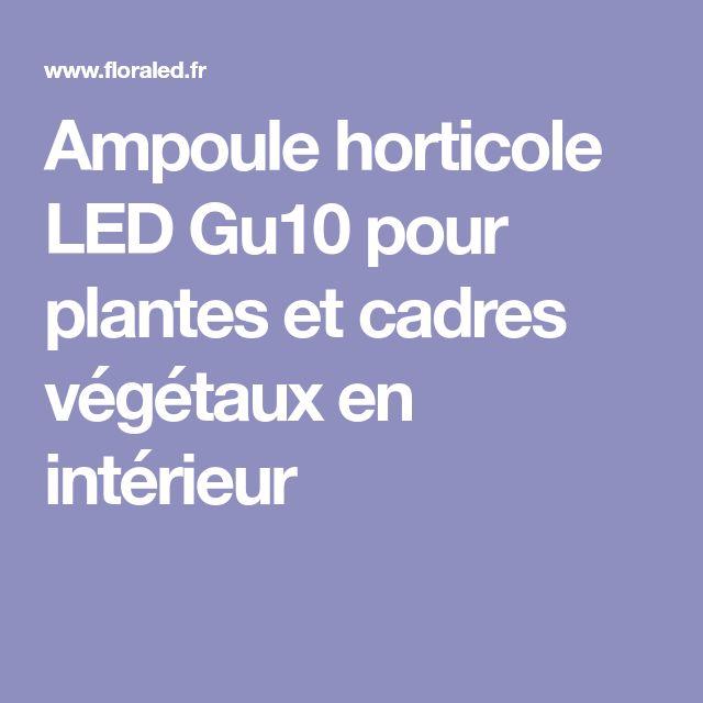 Ampoule horticole LED Gu10 pour plantes et cadres végétaux en intérieur