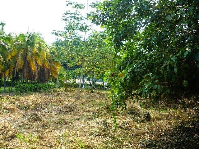 Melgar - Tolima  Lote en Condominio Valle de los Laneros $205.000.000  área 2.418m2 Cel. 3144204021 País - Colombia