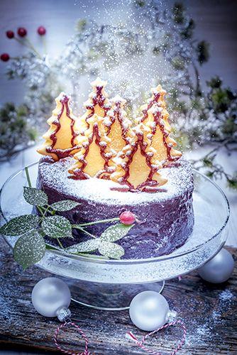 recette d'un fantastique gâteau de noël et sablés sapins - christmas cake - dessert facile - gâteau au chocolat