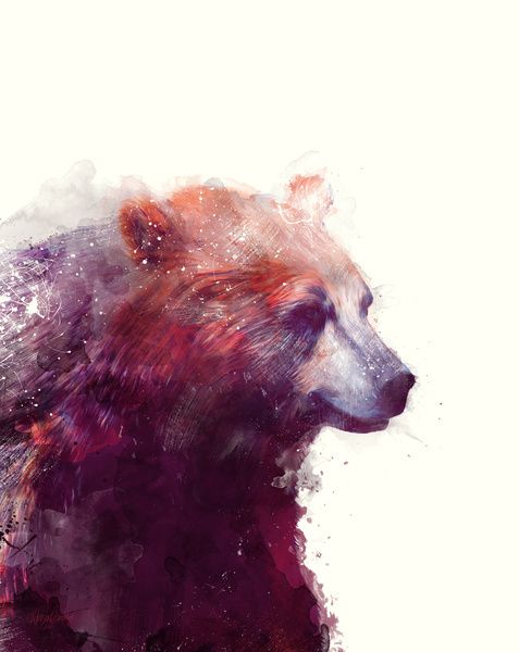 """Bear // Calm by Amy Hamilton STRETCHED CANVAS / LARGE (24"""" X 30"""") $150.00"""