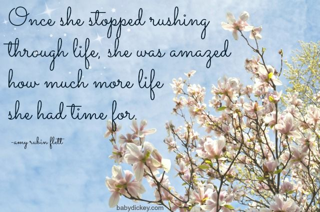 Quotes About Rushing Life: Don't Rush Through Life. Fabulous Blog Post To Go Along