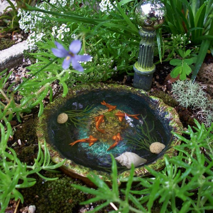1000 images about fairy water ideas on pinterest for Mini garden pool