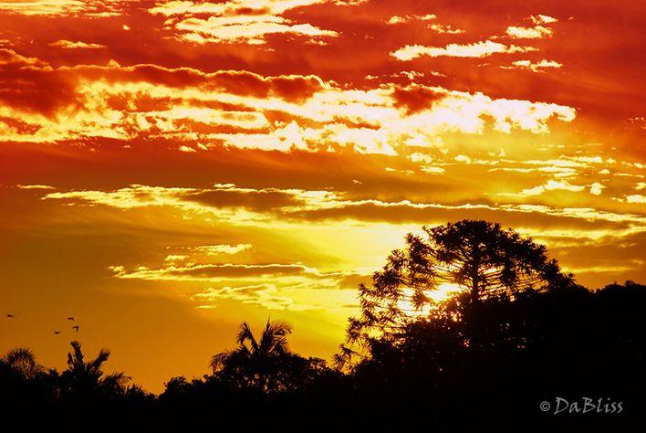 Buderim sunset