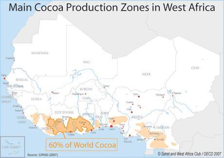 Cacao: il Clima minaccia ancora i raccolti - Materie Prime - Commoditiestrading