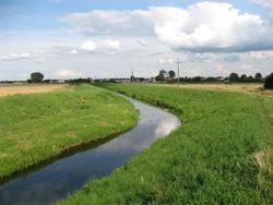 Białołęka - ochrona środowiska