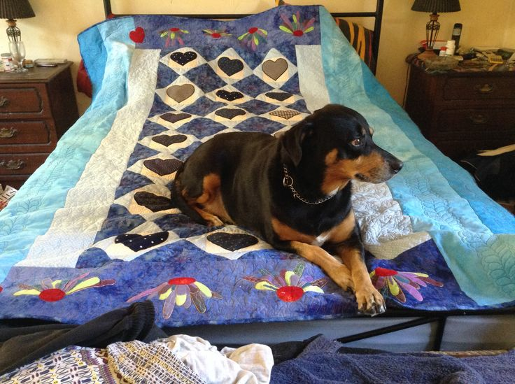 Jack really likes the finished quilt
