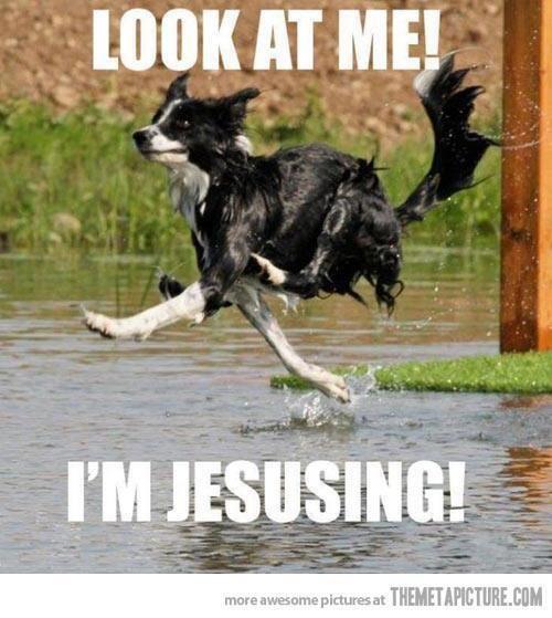 #jesusing #atheism #antireligion