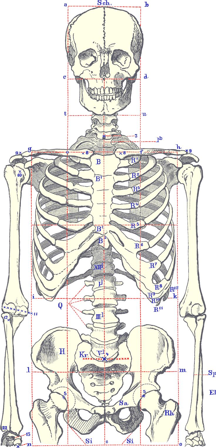 22 best Scarborough X Ray images on Pinterest | Cancer ...