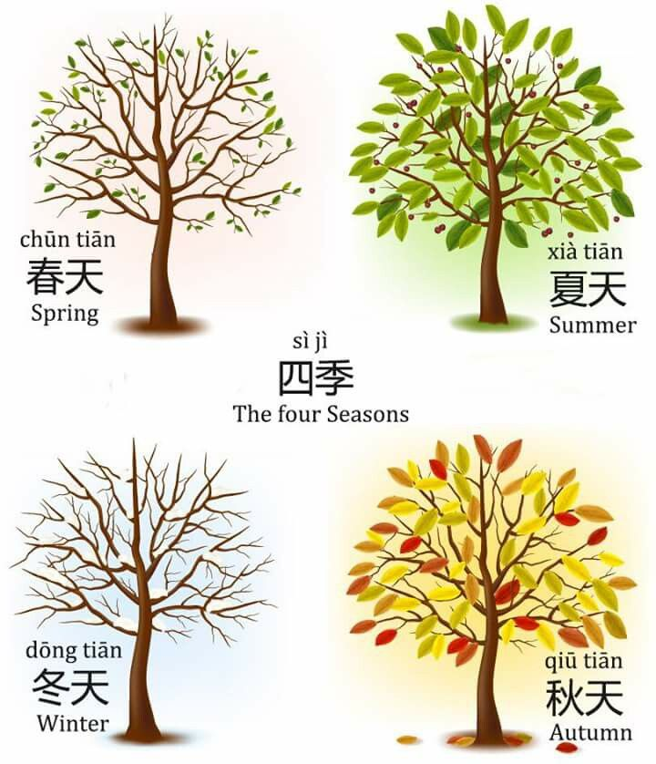seasons in Chinese