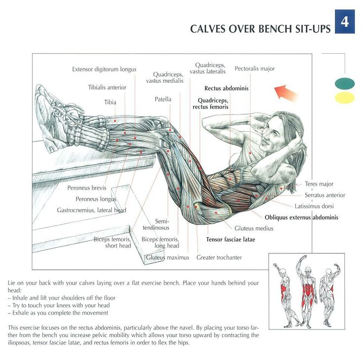 Calfs over bench sit-ups ~ Re-Pinned by Crossed Irons Fitness